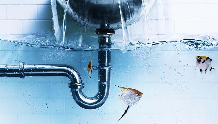 Başakşehir Su Tesisatçısı Servisi, Başakşehir Su Kaçağı Tespiti, Başakşehir Su Kaçağı, Başakşehir Su Kaçağı Bulma, Başakşehir Robotla Su Kaçağı